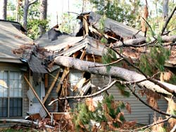 Wind Restoration Oregon City OR